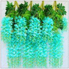 Wisteria Bonsai Seed 10pcs