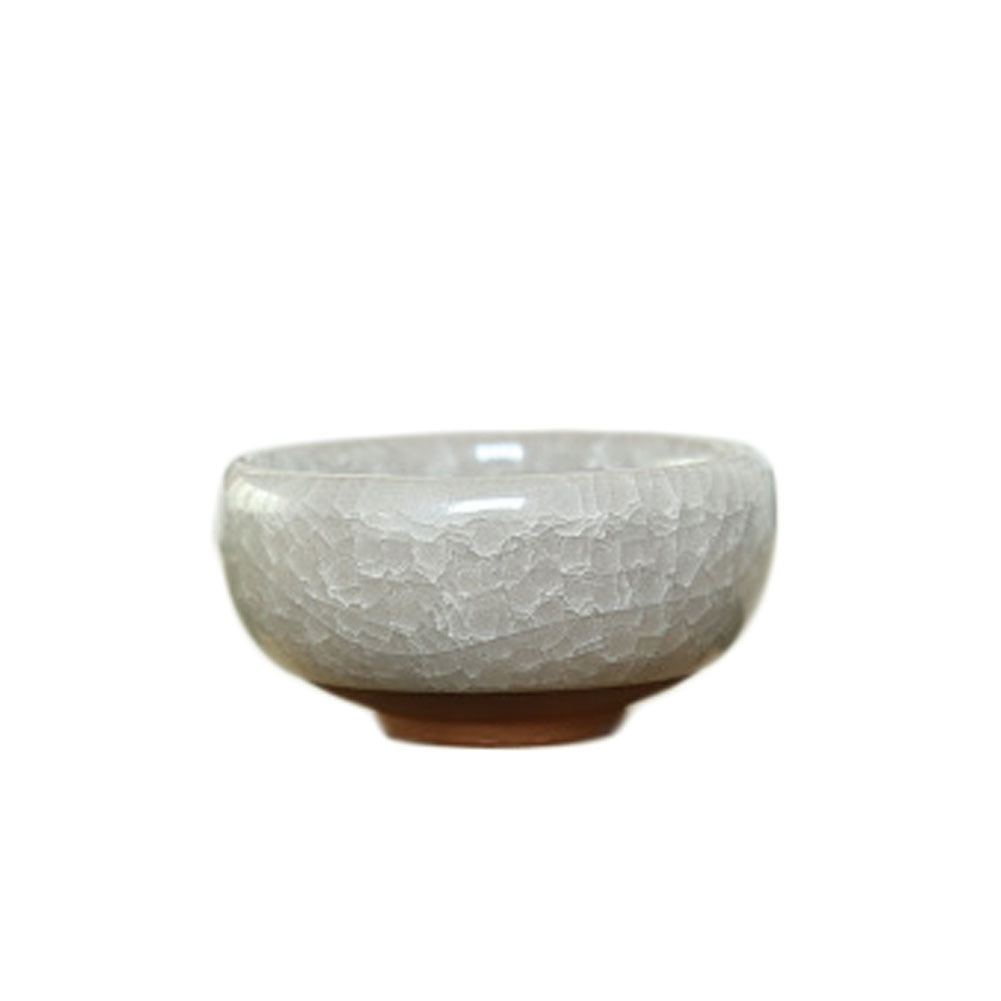 Mini Bonsai Ceramic Flower Pot