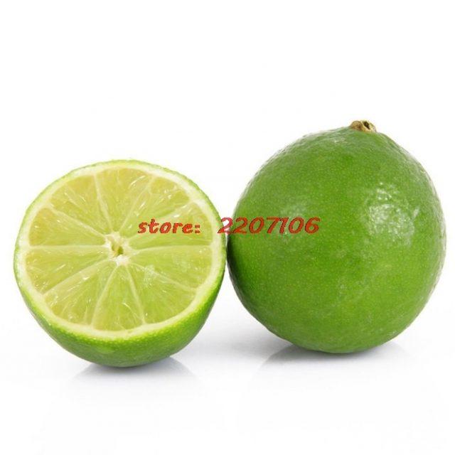 50Pcs Citrus Aurantifolia Key Lime Seeds