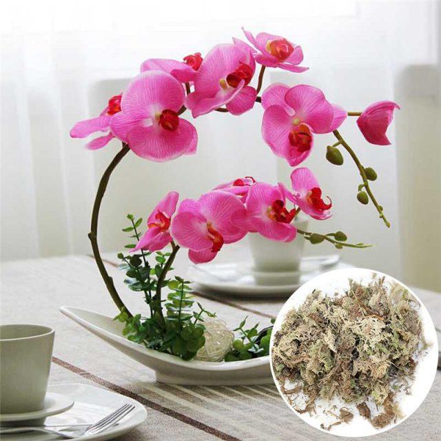 6L Sphagnum Moss Moisturizing Nutrition Organic Fertilizer