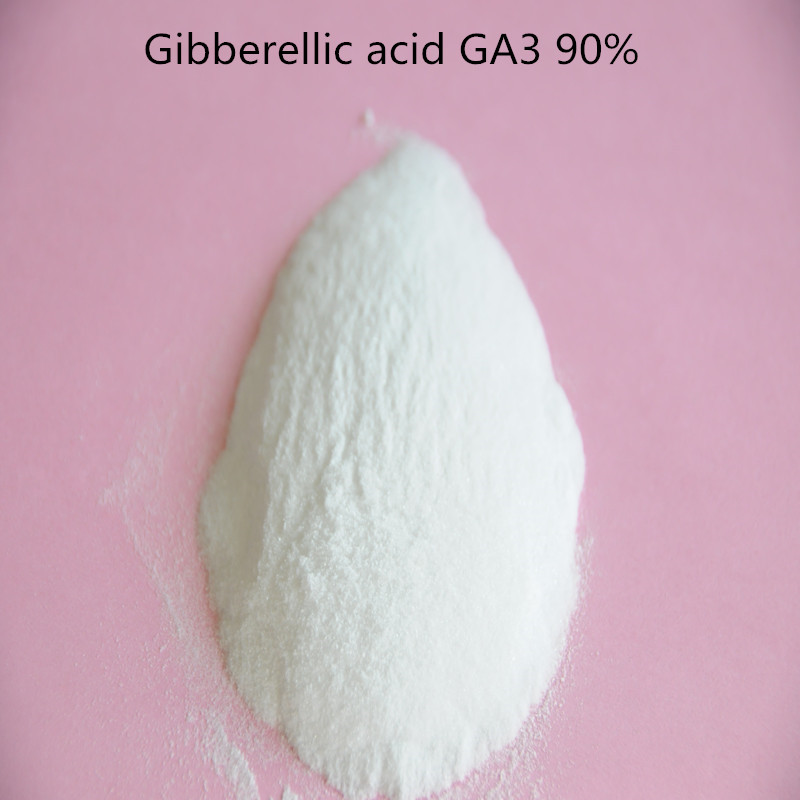 Gibberellin GA3 90% TC Gibberellic Plant Growth Fertilizer