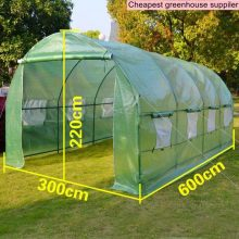 Big Greenhouse Plant Tree Seed Cover Tunnel 600x300x220cm