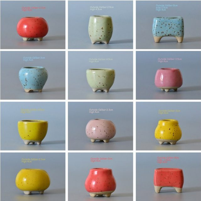 Mini Shaped Succulent Cactus Flower Pot 34 styles